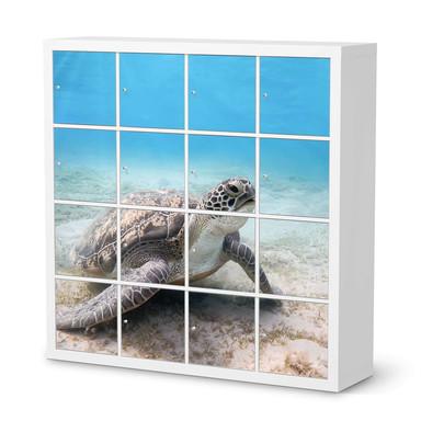 Möbelfolie IKEA Expedit Regal 16 Türen - Green Sea Turtle