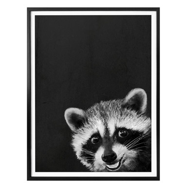 Poster Graves - Racoon