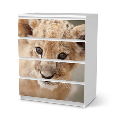 Folie IKEA Malm Kommode 4 Schubladen - Simba- Bild 1
