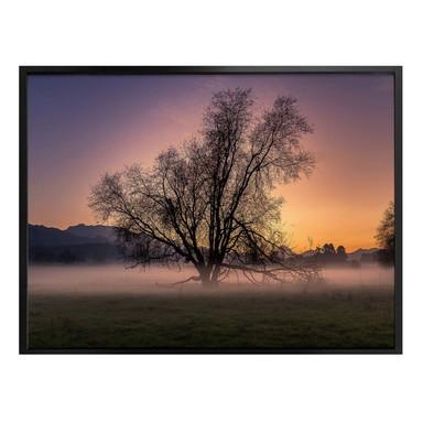 Poster Cuadrado - The Fog