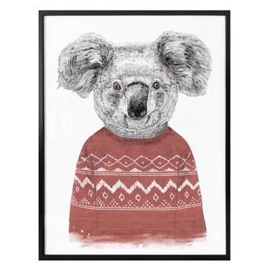Poster Solti - Koala im Winter