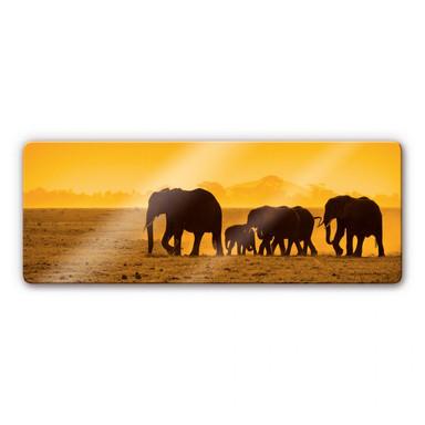 Glasbild Elefantensilhouetten Panorama