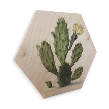 Hexagon - Holz Birke-Furnier Saftleven - Kaktus
