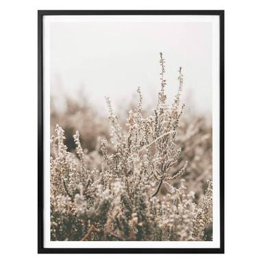 Poster Annie - Gräser