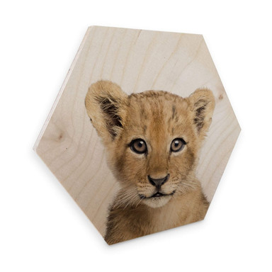 Hexagon - Holz Birke-Furnier Sisi & Seb - Baby Löwe