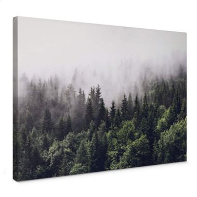 Leinwandbild Nebliger Wald