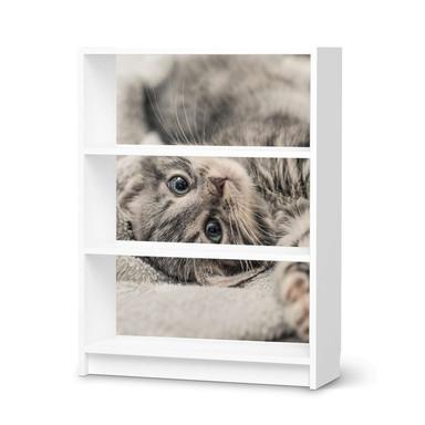 Möbelfolie IKEA Billy Regal 3 Fächer - Kitty the Cat