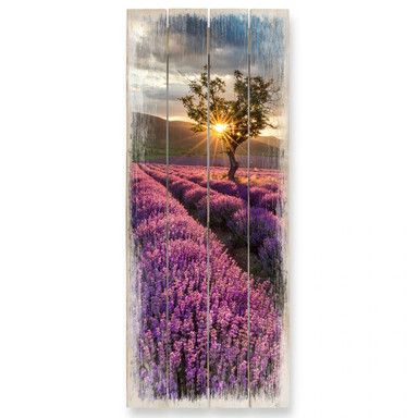 Holzbild Lavendelblüte in der Provence 02 - Panorama - Bild 1