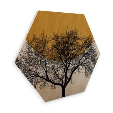 Hexagon - Holz Birke-Furnier - Kubistika - Wintermorgen