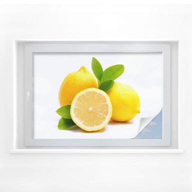 Sichtschutzfolie Lemons