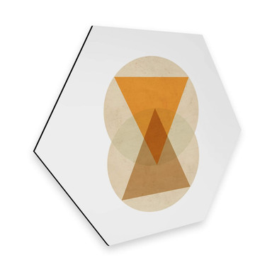 Hexagon - Alu-Dibond Nouveauprints - Circles and triangles orange and brown