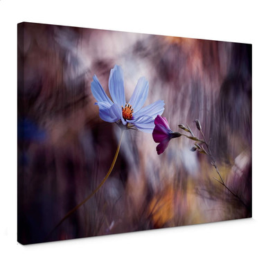 Leinwandbild Bravin - Rendezvous zweier Blumen