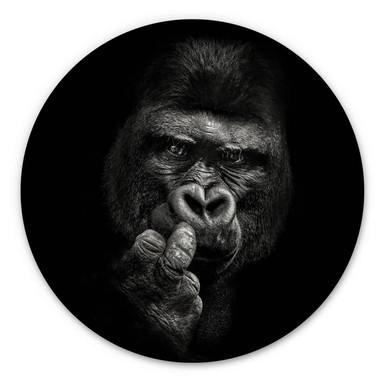 Alu-Dibond Meermann - Der Gorilla - Rund