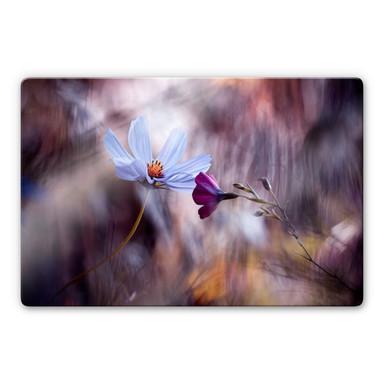 Glasbild Bravin - Rendezvous zweier Blumen
