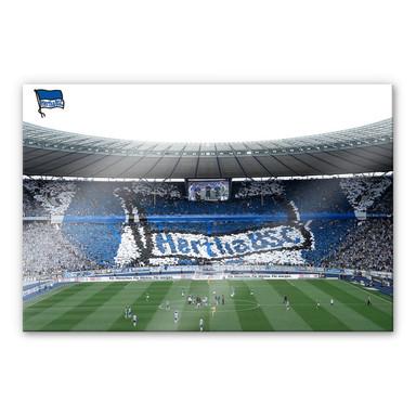 Acrylglasbild Hertha BSC - Spielstart im Stadion
