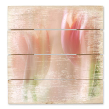 Holzbild Westum - Shy tulips