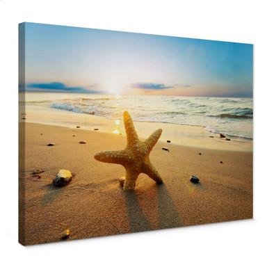 Leinwandbild Seestern im Sand
