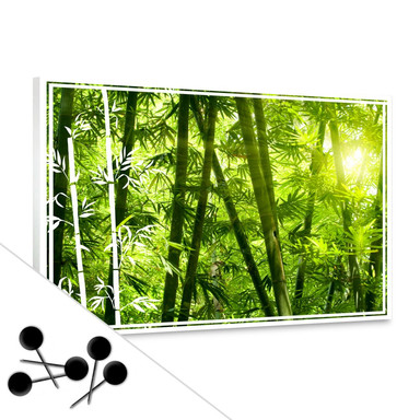 Pinnwand Sonnenschein im Bambuswald
