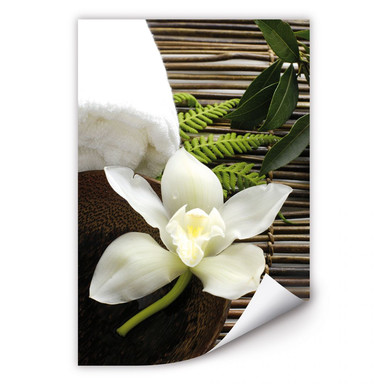 Wallprint Wellness Orchidee