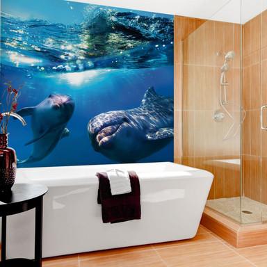 Fototapete Dolphins Underwater - 240x260cm - Bild 1
