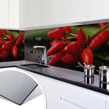 Küchenrückwand - Alu-Dibond-Silber - Exotische Schärfe