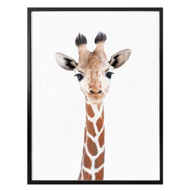 Poster Sisi & Seb - Baby Giraffe