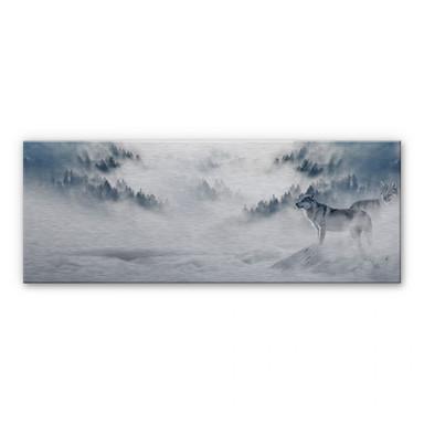 Alu Dibond Bild Wölfe im Schnee - Panorama
