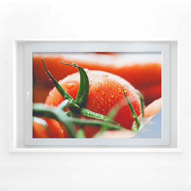 Sichtschutzfolie Fresh Tomato