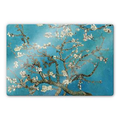 Glasbild van Gogh - Mandelblüte