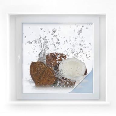 Sichtschutzfolie Caribbean Coconut - quadratisch