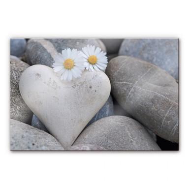 Acrylglasbild Liebesblumen