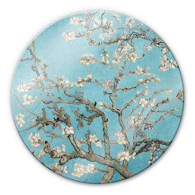 Glasbild van Gogh - Mandelblüte - Rund