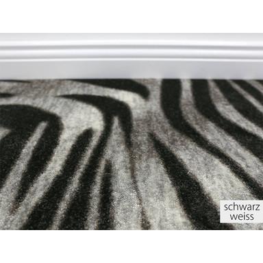 Noah Zebra Teppichboden