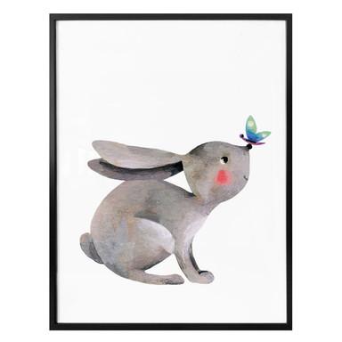 Poster Blanz - Kleiner Hase