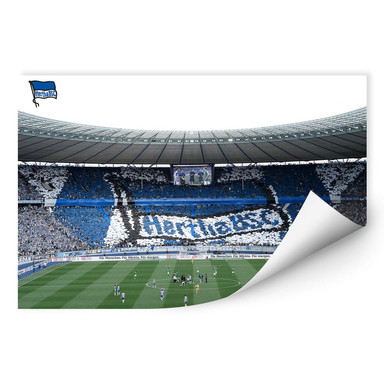 Wallprint Hertha BSC - Spielstart im Stadion