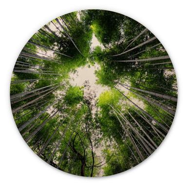 Holzbild Hugonnard - Wald in Japan - Rund