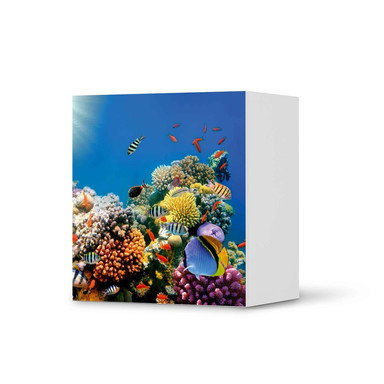 Klebefolie IKEA Besta Regal 1 Türe - Coral Reef