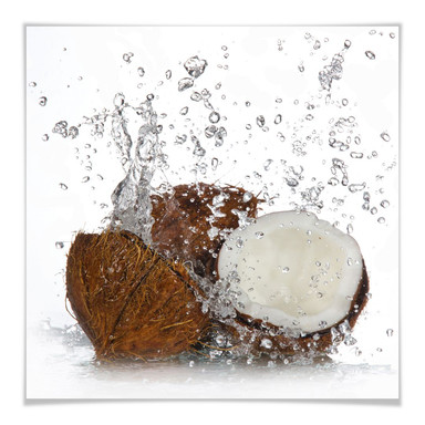 Poster Caribbean Coconut