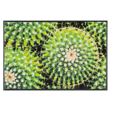 Wash&Dry Fussmatte Spiny Green 50x75cm