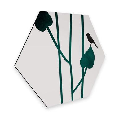 Hexagon - Alu-Dibond Kubistika - Natura