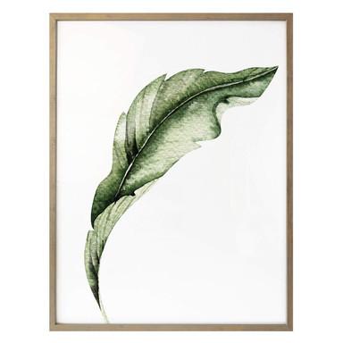 Poster Kvilis - Banana Leaf 02