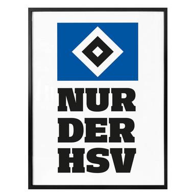 Poster Nur der HSV 01