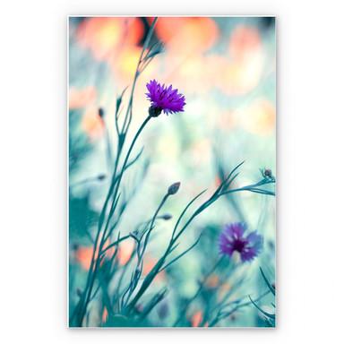 Wandbild Bravin - Luminous purple