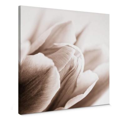 Leinwandbild Tulpe im Detail - quadratisch