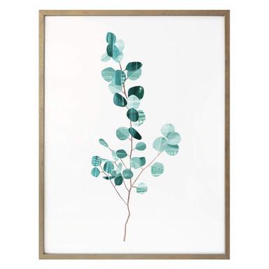 Poster Goed Blauw - Das Eucalyptusblatt