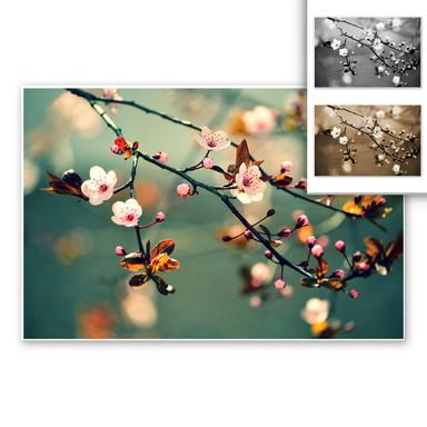 Wandbild Frühlingserwachen
