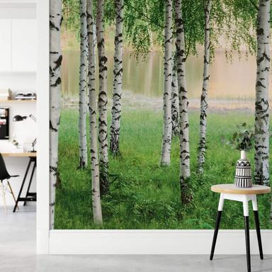 Fototapete Papiertapete Nordischer Wald - Bild 1
