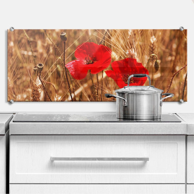 Küchenrückwand Mohnblüten im Feld - Panorama