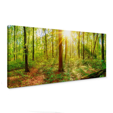 Leinwandbild - Tief im Wald - Panorama