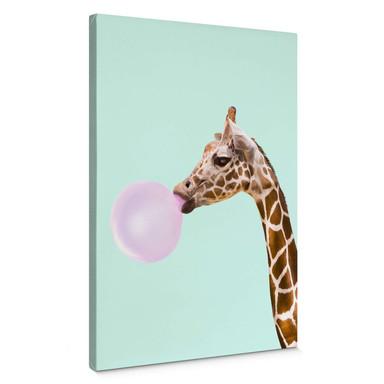 Leinwandbild Fuentes - Giraffe und ihr Kaugummi